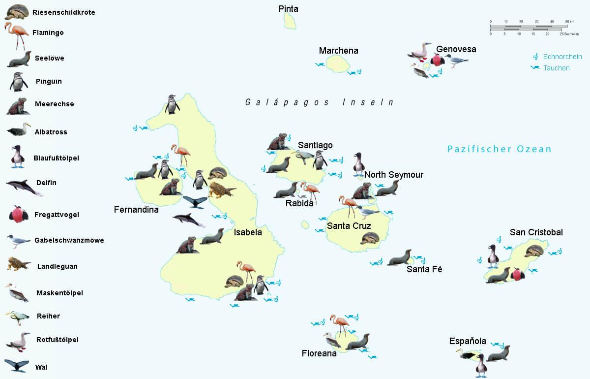 Galapagos Tierkarte