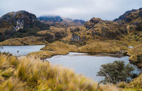 Landschaft im Nationalpark Cajas, Ecuador