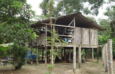 Cabaña en la selva, Ecuador