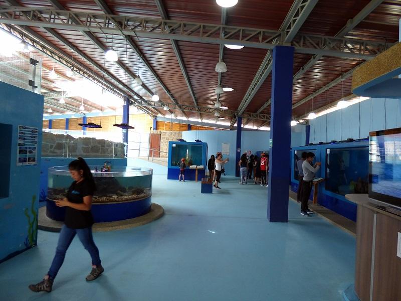 Meeresaquarium Valdivia Hacienda El Dorado