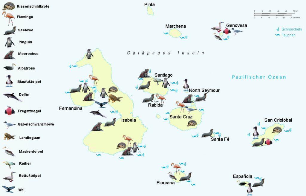 Mapa de los animales a Galápagos, Ecuador